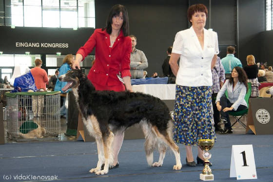 World winner 2012 Galantnaja Galka Wolkowo